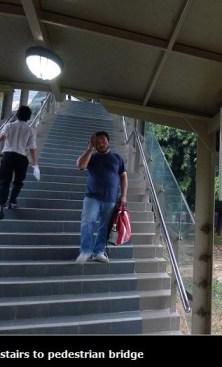 stairs to pedestrian bridge