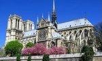 La cathédrale Notre Dame de Paris - Paris 4e