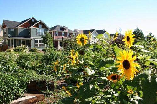 Highlands' Garden Village, Denver (courtesy of Peter Calthorpe)