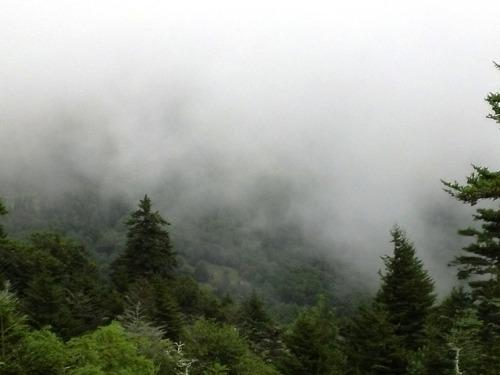 Mt Mitchell, NC (c2014 F Kaid Benfield)