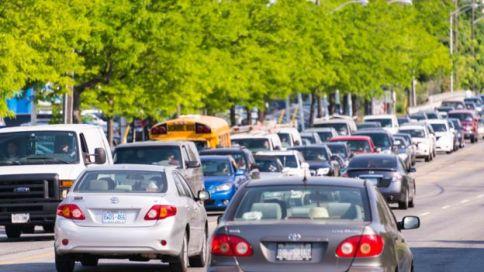 Avenida con autos junto a una fila de árboles frondosos