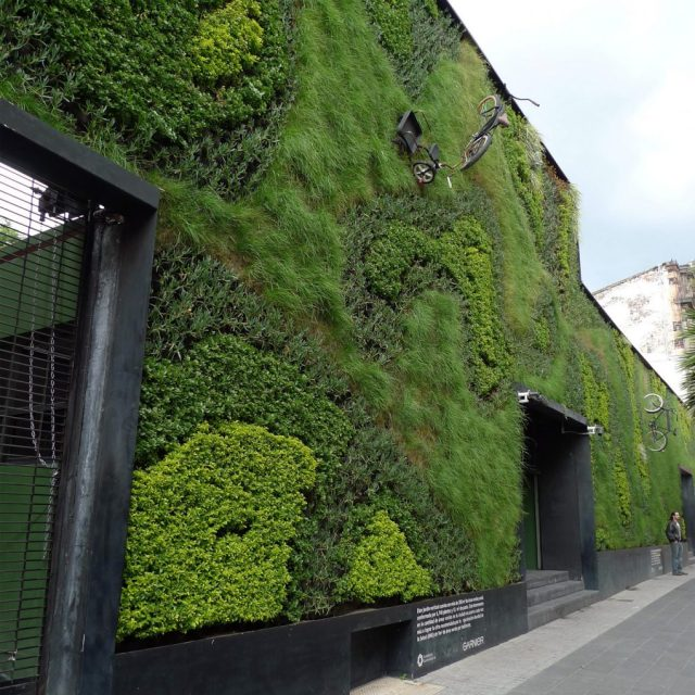 A bicycle-themed living wall in Mexico City